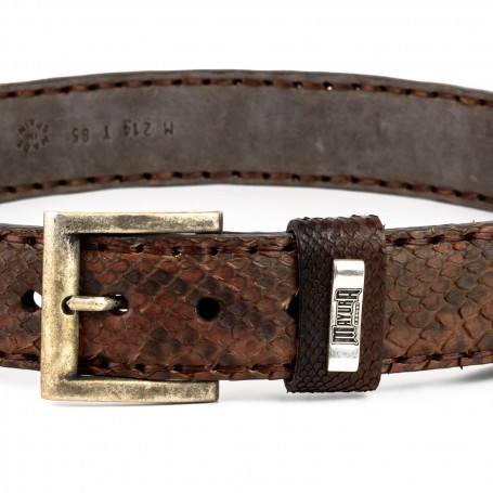 Belt in Crocodile / Python Camel
