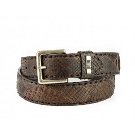 Belt in Castana Python
